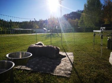 Sonnencamping Kärnten